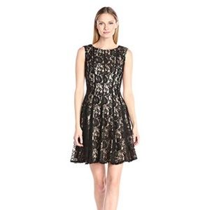 Fit and Flare Black Lace Cap Sleeve Dress